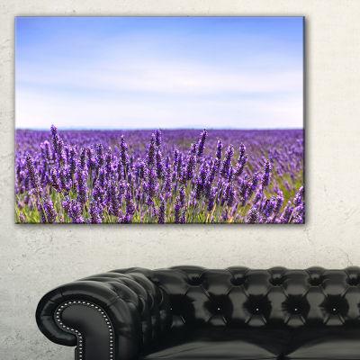 Designart Close View Of Lavender Flower Field Canvas Art