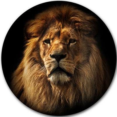 Design Art Lion Portrait with Rich Mane Disc Animal Circle Metal Wall Art