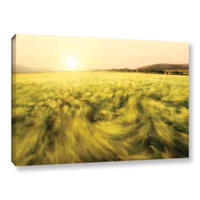 Brushstone Barley Gallery Wrapped Canvas Wall Art