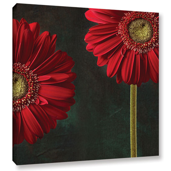 Brushstone Gerbera And Playful Mood Gallery Wrapped Canvas Wall Art