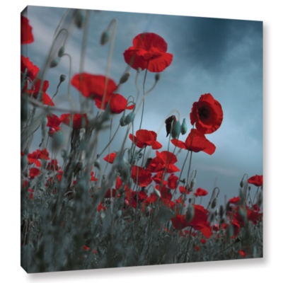 Hot Cold Contrast Gallery Wrapped Canvas