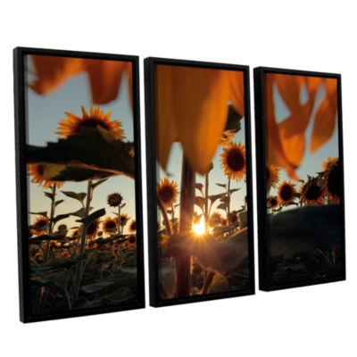 Brushstone Sunflower Field 3-pc. Floater Framed Canvas Wall Art