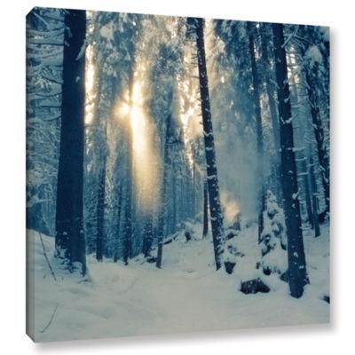 Brushstone Winter Light Gallery Wrapped Canvas Wall Art