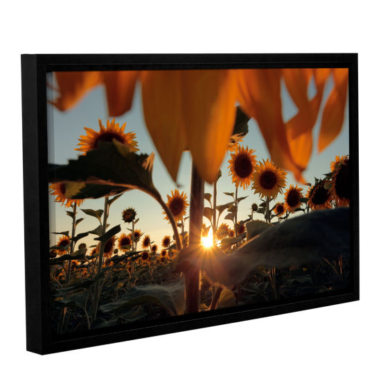 Brushstone Sunflower Field Gallery Wrapped Floater-Framed Canvas Wall Art