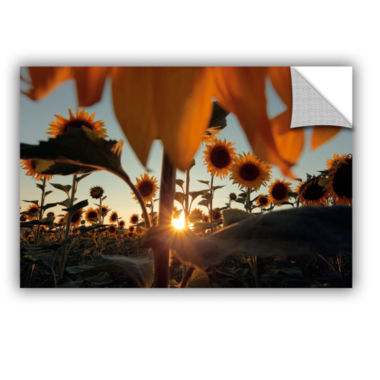 Brushstone Sunflower Field Removable Wall Decal