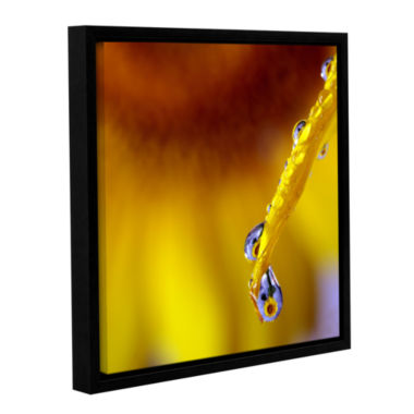 Brushstone Sunflower In A Drop Gallery Wrapped Floater-Framed Canvas Wall Art