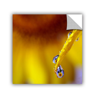 Brushstone Sunflower In A Drop Removable Wall Decal