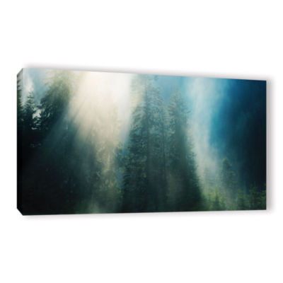Brushstone Sunny Showers Gallery Wrapped Canvas Wall Art