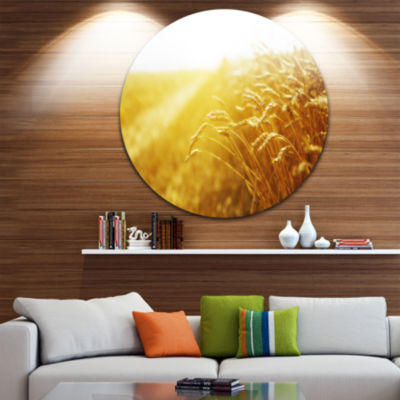 Designart Bright Sunset over Wheat Field LandscapeRound Circle Metal Wall Art