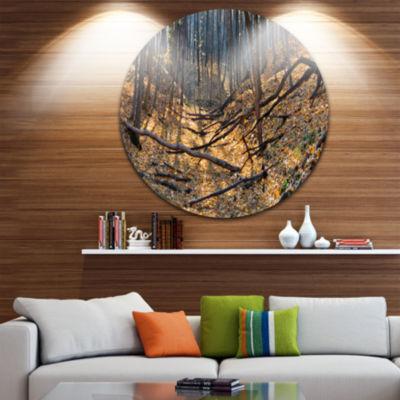 Designart Thick Autumn Forest Panorama Landscape Round Circle Metal Wall Art