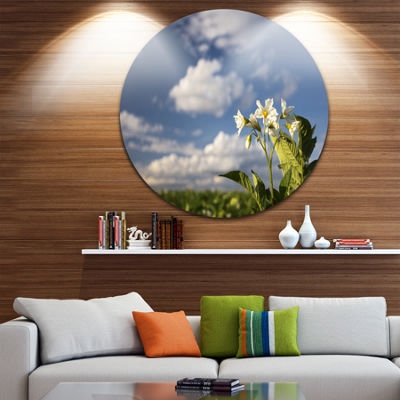 Designart Potato Plant Flowers Landscape Round Circle Metal Wall Art