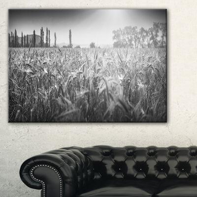 Designart Black And White Wheat Field Canvas Art