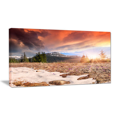 Designart Blooming Crocuses In Mountains Canvas Art