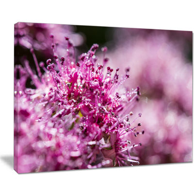 Designart Bright Pink Little Flowers Canvas Art