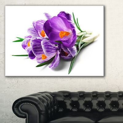 Designart Bunch Of Blooming Crocus Flowers Canvas Art