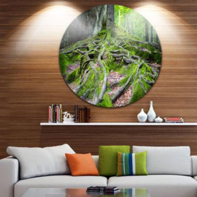 Design Art Deep Moss Forest in Ukraine Landscape Metal Circle Wall Art