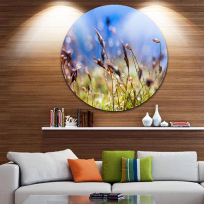 Design Art Abstract Summer Spring Moss Flowers Landscape Metal Circle Wall Art