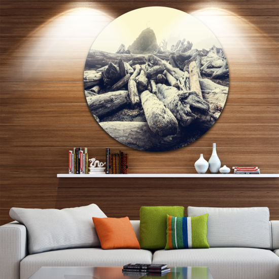 Design Art Olympic National Park Landscape Landscape Metal Circle Wall Art
