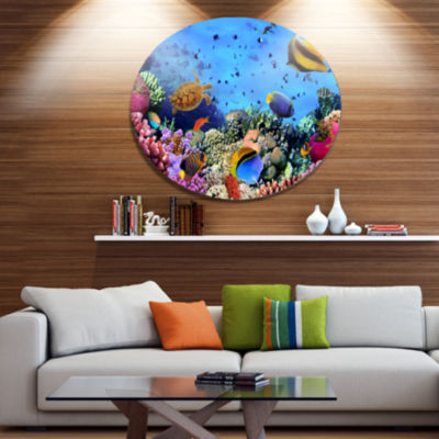Designart Coral Colony on Reef Egypt Disc Oversized Animal Wall Art