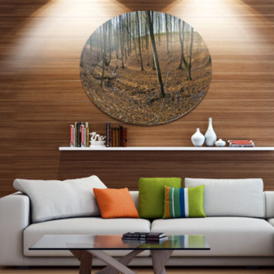Designart Woods in Fall Forest Panorama Disc Forest Metal Circle Wall Art