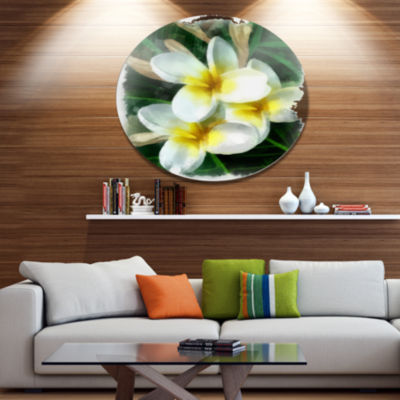 Designart Cute Frangipani Flowers Watercolor DiscFloral Metal Circle Wall Art