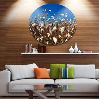 Designart Blooming Alabama Cotton Field Disc LargeLandscape Metal Circle Wall Art