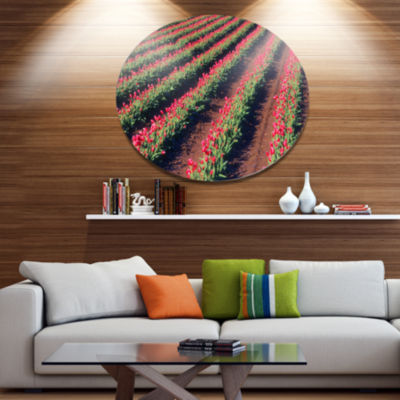 Designart Beautiful Field of Red Tulip Flowers Disc Large Landscape Metal Circle Wall Art