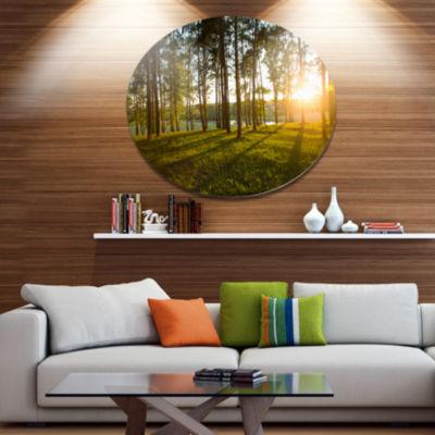 Designart Bright Sunlight in Dense Forest Disc Large Landscape Metal Circle Wall Art