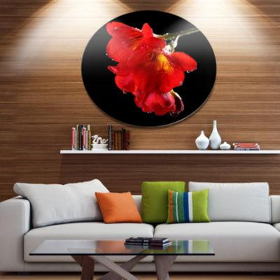 Designart Freesia Flower on Black Background DiscLarge Floral Metal Artwork