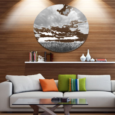 Designart Rapeseed Garden in Black and White DiscLarge Landscape Metal Circle Wall Art