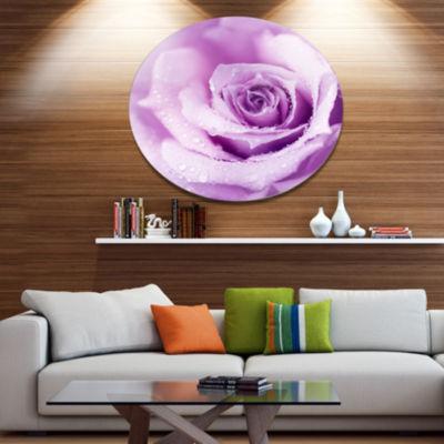 Designart Purple Wet Rose Background Disc FlowersMetal Circle Wall Artwork
