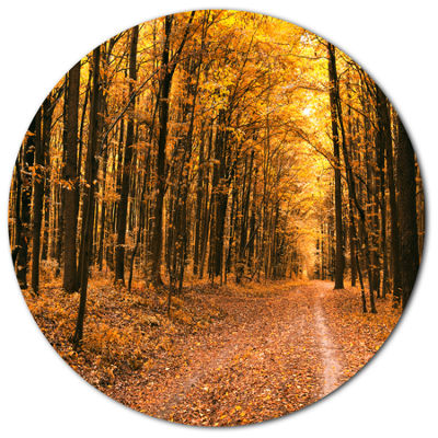 Designart Pathway in Yellow Autumn Forest Disc Forest Metal Circle Wall Art