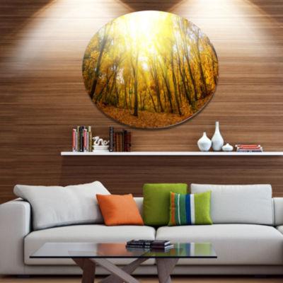 Designart Yellow Autumn Forest in Sunlight Disc Forest Metal Circle Wall Art