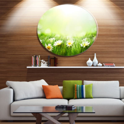 Designart Spring Meadow with Daisies Disc Large Animal Metal Circle Wall Art