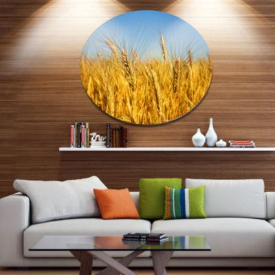 Designart Bright Golden Wheat Field Disc Large Landscape Metal Circle Wall Art