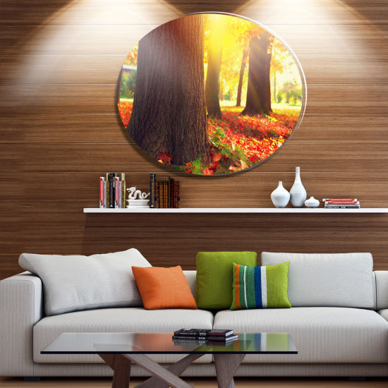 Designart Autumn Trees in the Sunlight Disc LargeLandscape Metal Circle Wall Art