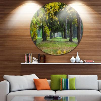 Design Art Green Park in Autumn Landscape Photography Circle Metal Wall Art
