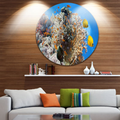 Design Art Coral Scene Panorama Disc Photography Circle Metal Wall Art