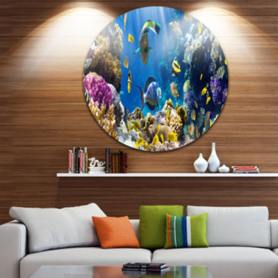 Design Art Fish in Coral Reef Disc Seascape Photography Circle Metal Wall Art