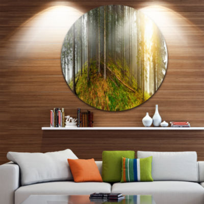 Design Art Early Morning Sun in Forest Landscape Photography Circle Metal Wall Art
