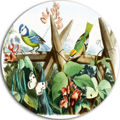 Design Art Colorful Birds Sitting on Branches DiscAnimal Circle Metal Wall Art