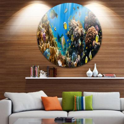 Design Art Coral Colony Panorama Disc PhotographyCircle Metal Wall Art