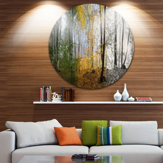 Design Art Forest in Early Morning Landscape Photography Circle Metal Wall Art