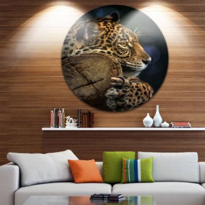 Design Art Relaxing Jaguar Animal Photography Circle Metal Wall Art