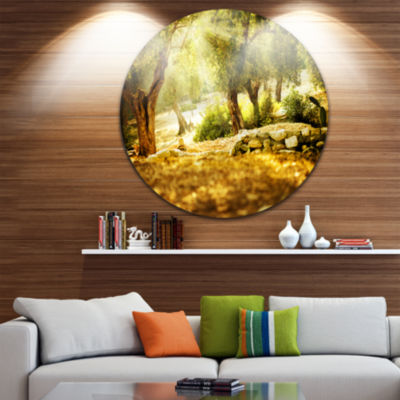 Design Art Olive Trees Disc Photography Circle Metal Wall Art