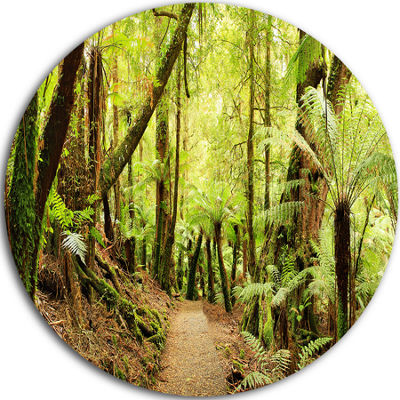 Design Art Rainforest Panorama Landscape Disc Photography Circle Metal Wall Art
