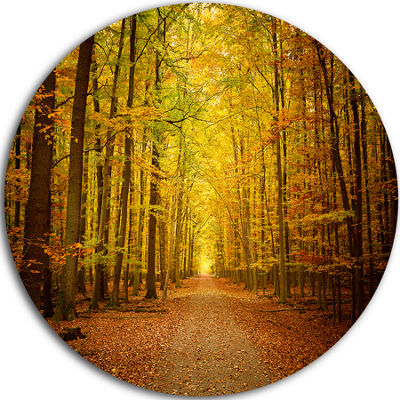 Design Art Pathway in Green Autumn Forest Disc Photography Circle Metal Wall Art