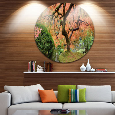 Design Art Old Japanese Maple Tree Disc LandscapePhotography Circle Metal Wall Art