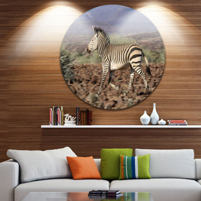 Design Art Zebra in Damaraland Landscape Photography Circle Metal Wall Art