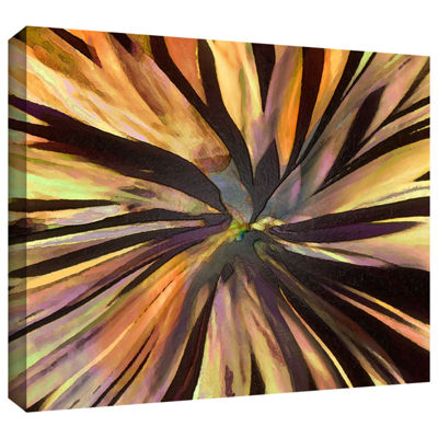 Brushstone Suculenta Paleta Gallery Wrapped CanvasWall Art